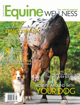 Equine Wellness Magazine Subscription