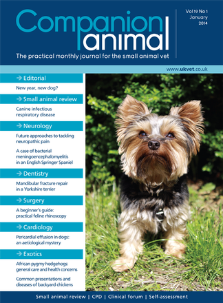 Companion Animal Magazine Subscription