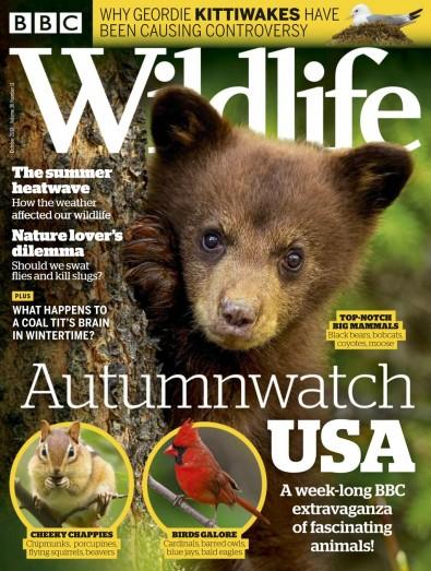 BBC Wildlife Magazine Subscription