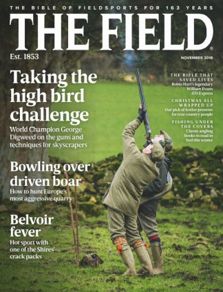 The Field Magazine Subscription