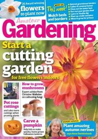 Amateur Gardening Magazine Subscription