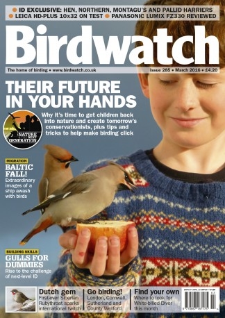 Birdwatch Magazine Subscription