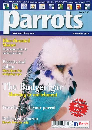 Parrots Magazine Subscription