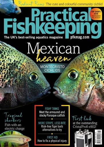 Practical Fishkeeping Magazine Subscription