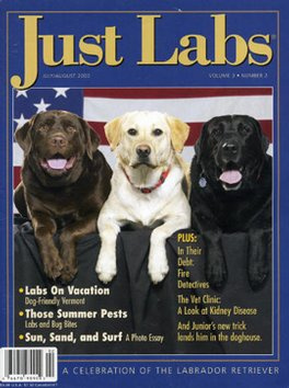Just Labs Magazine Subscription
