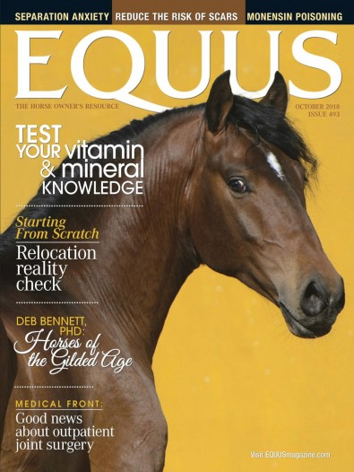 Equus Magazine Subscription