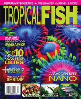 Tropical Fish Hobbyist Magazine Magazine Subscription