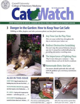 Cat Watch Magazine Subscription