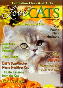 I Love Cats Magazine Subscription