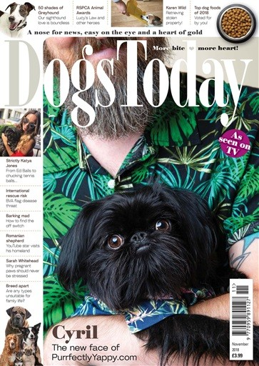 Dogs Today Magazine Subscription